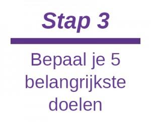 doelen website 3