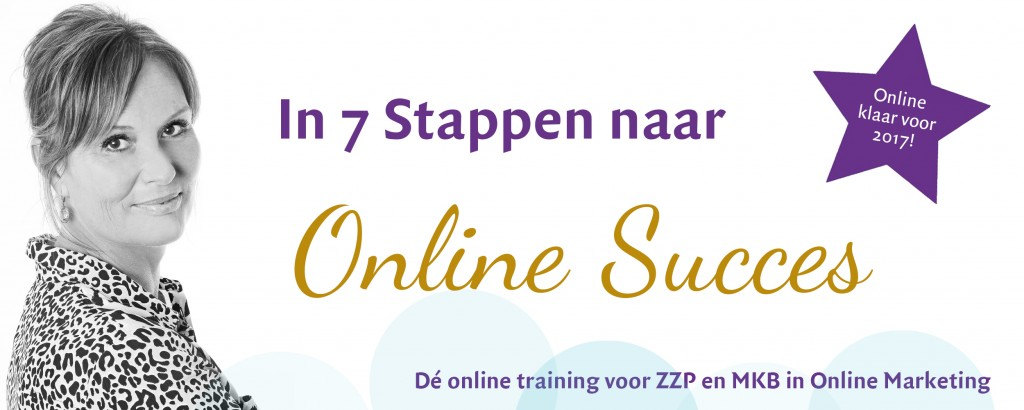 7stappenonlinesucces